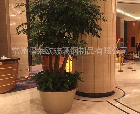 酒店玻璃钢花盆